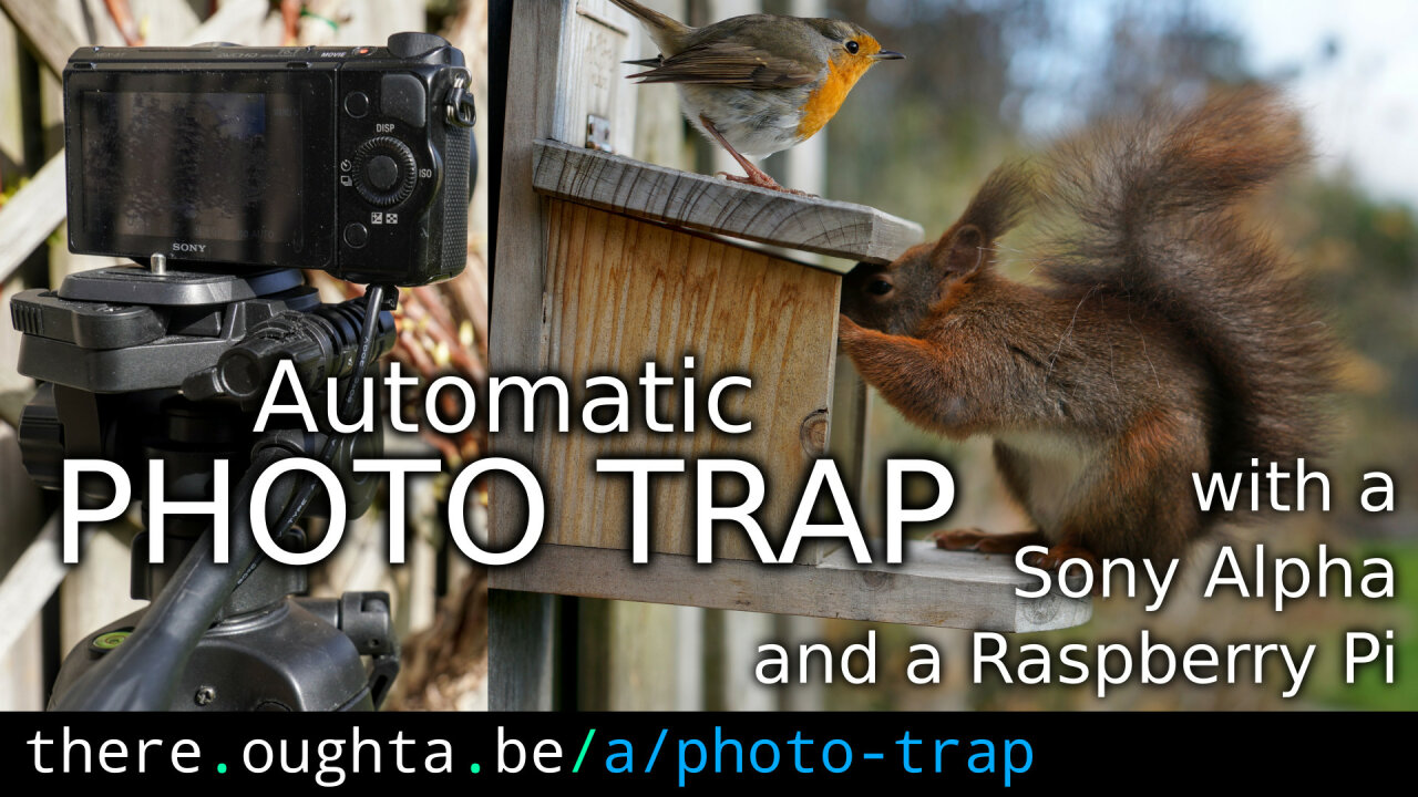Thumbnail of the youtube video showing a Sony Alpha NEX-5T on a tripod and a squirrel on the nut box next to it.